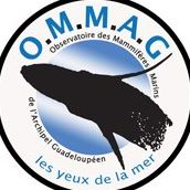 Ommag